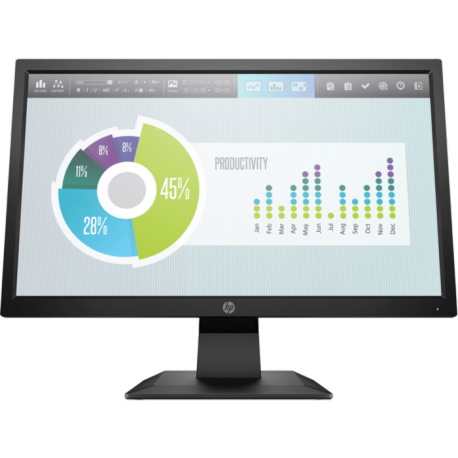 HP P204 19.5-inch Monitor 5RD65AS